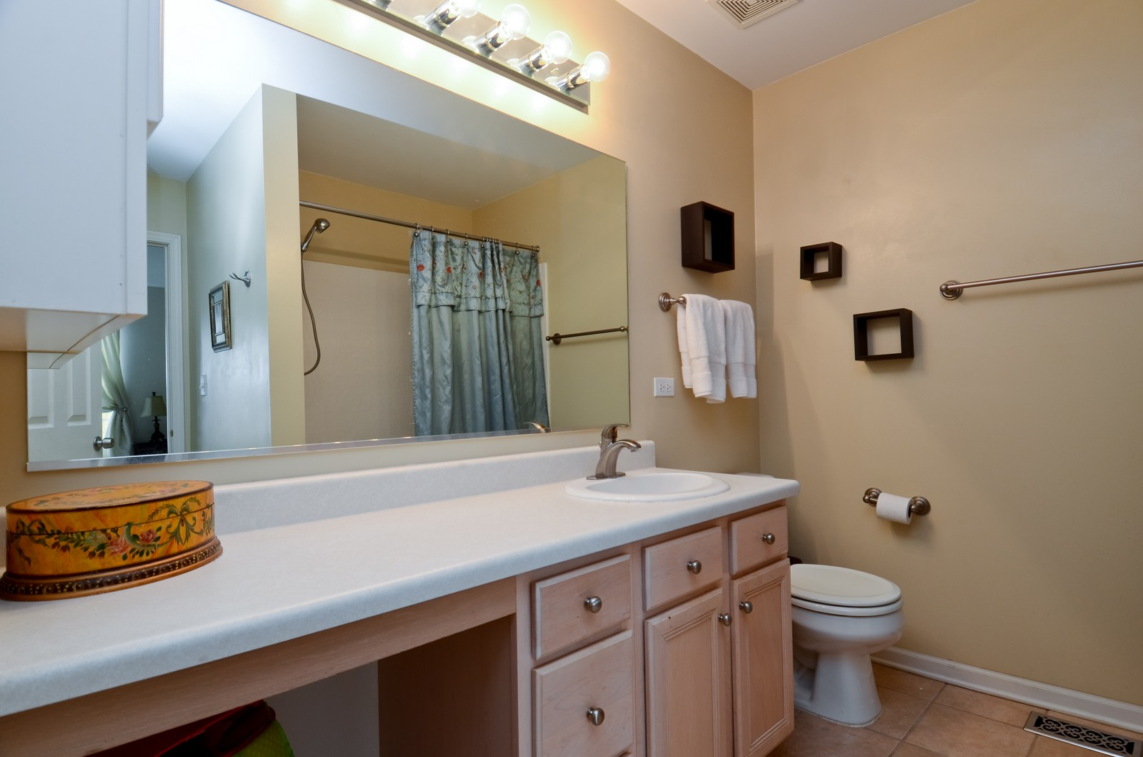 Real Estate Photography - 2822 Collins, Naperville, IL, 60540 - Bathroom
