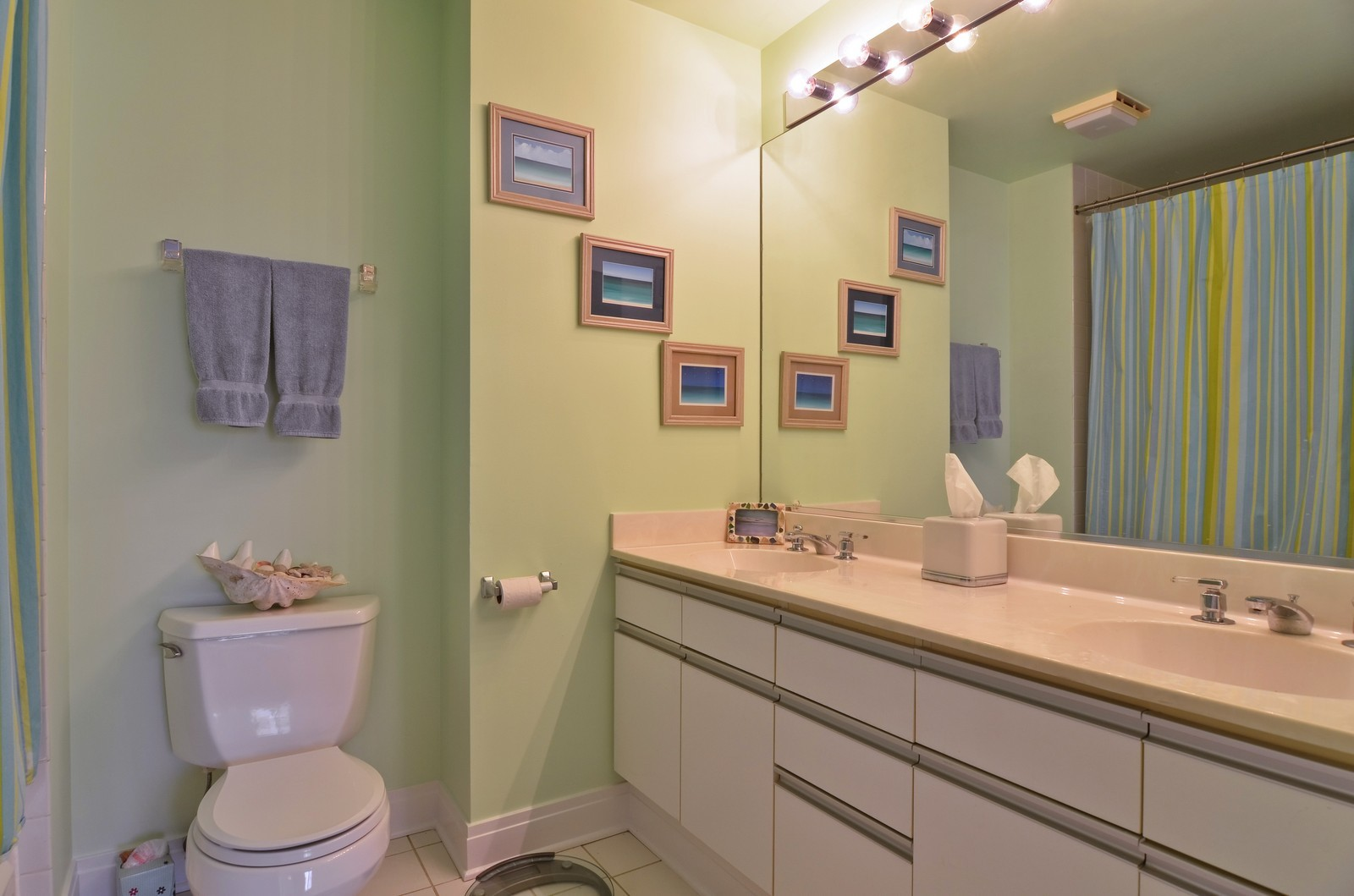 Real Estate Photography - 1347 S Clark, Chicago, IL, 60605 - Master Bathroom