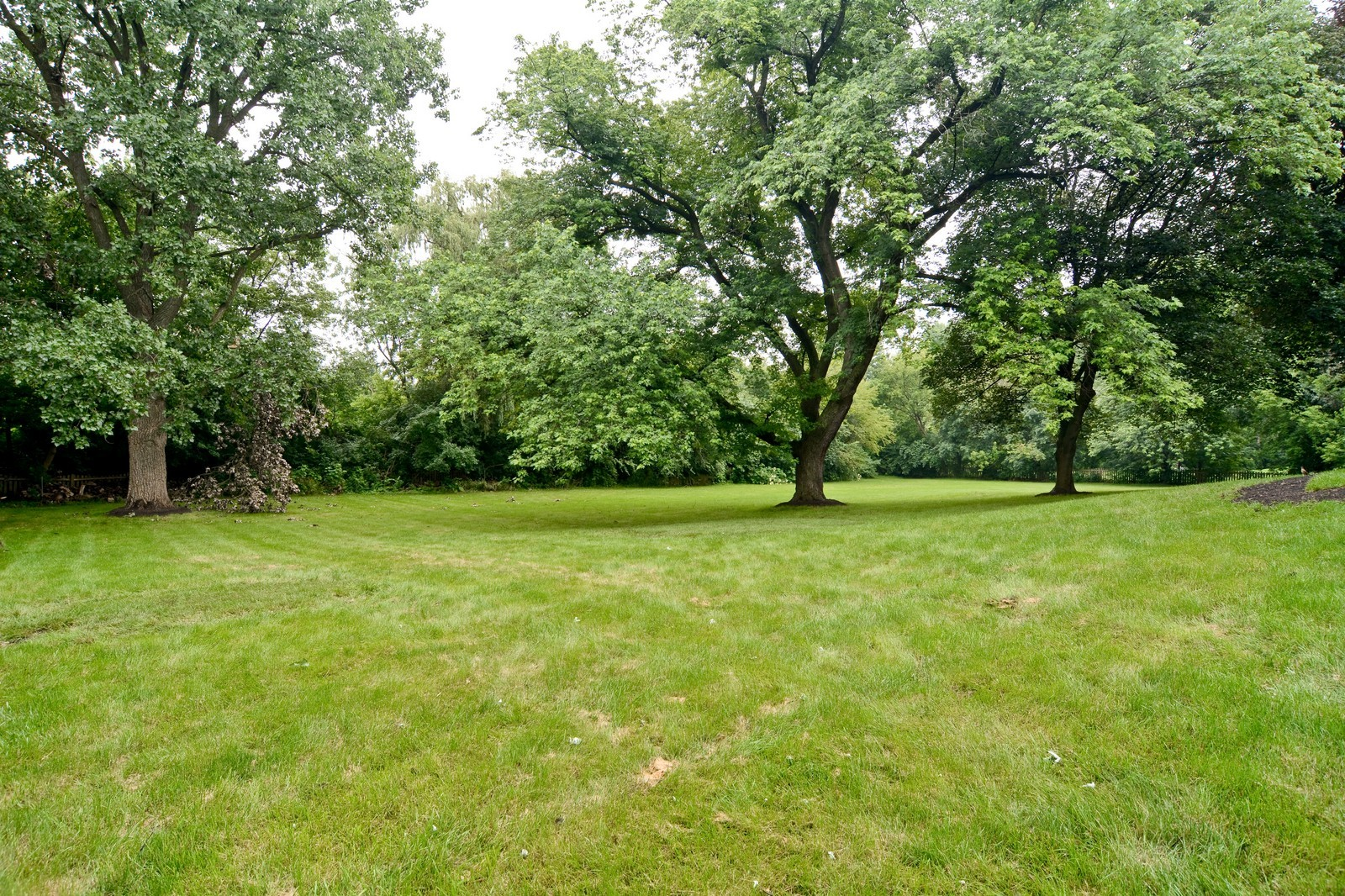 Real Estate Photography - 2S611 Arboritumn, Glen Ellyn, IL, 60137 - Back Yard