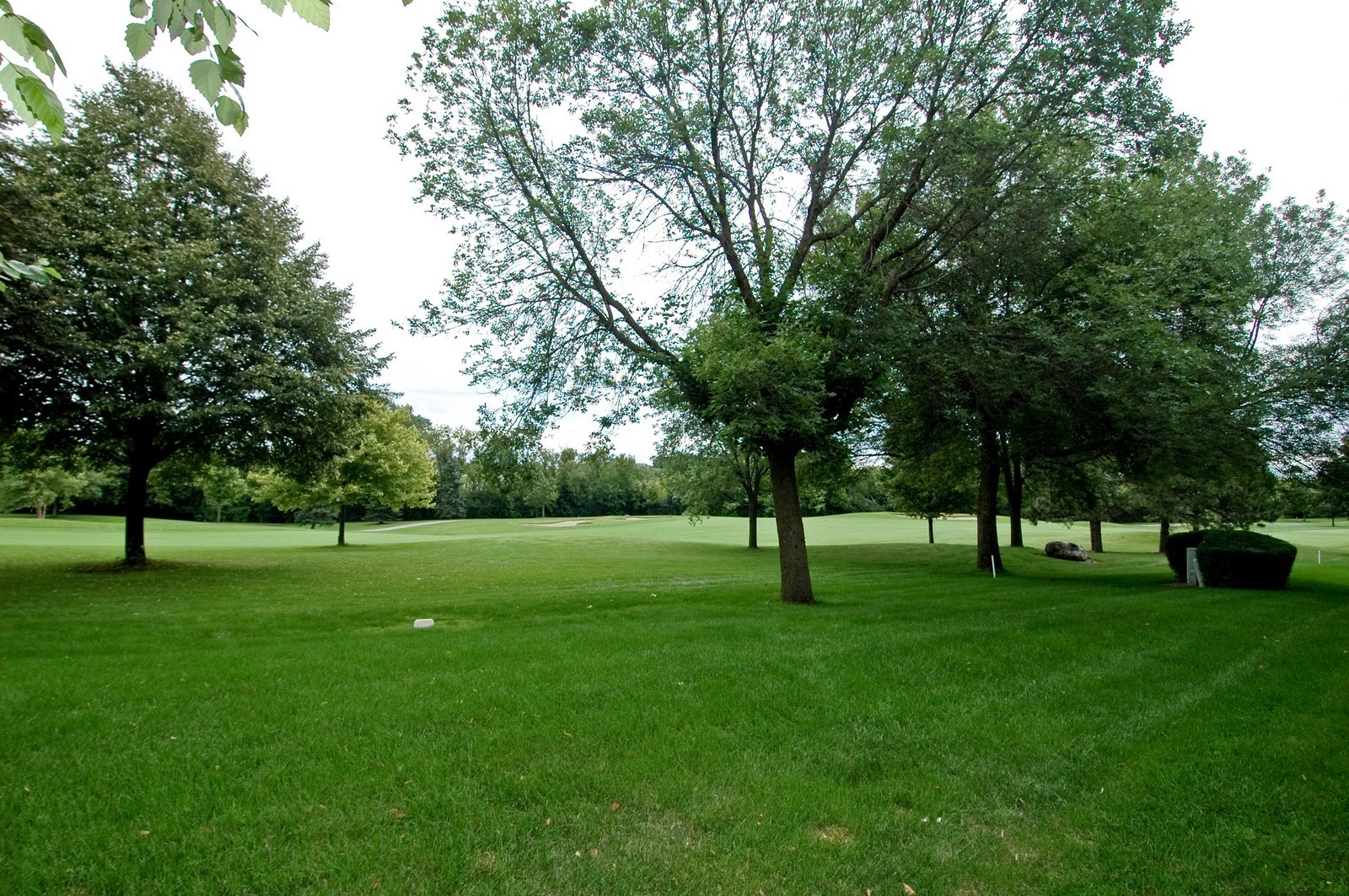 Real Estate Photography - 210 Course Dr, Lake in the Hills, IL, 60156 - Back Yard
