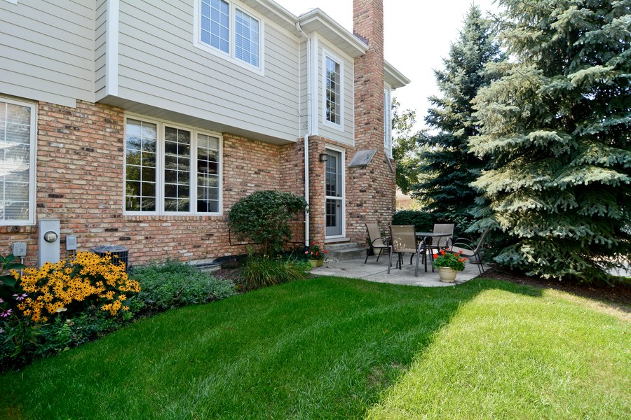 Real Estate Photography - 436 Hill Ct, Clarendon Hills, IL, 60514 - Rear View