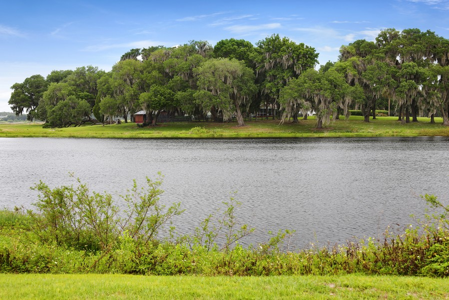 Real Estate Photography - 36225 Covington Rd, Dade City, FL, 33525 - Location 11