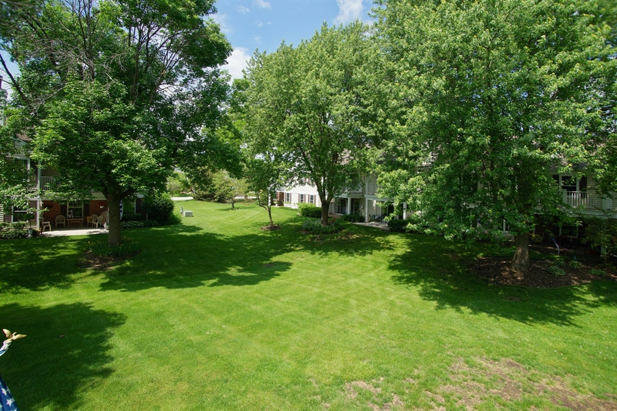 Real Estate Photography - 12 Country Club Dr, Prospect Heights, IL, 60070 - Back Yard