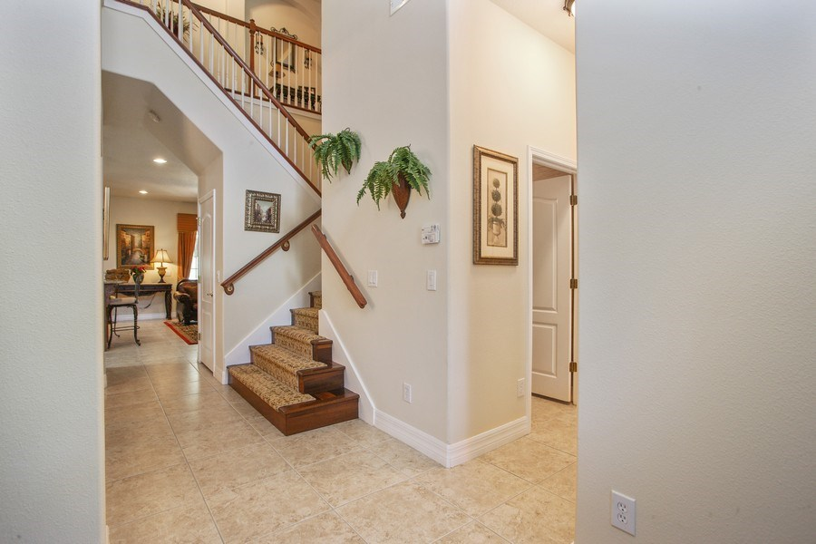 Real Estate Photography - 2614 Brookforest Dr, Wesley Chapel, FL, 33544 - Foyer