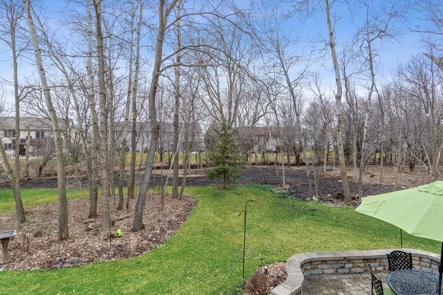 Real Estate Photography - 441 Clearbrooke Ter, Cottage Grove, WI, 53527 - Back Yard