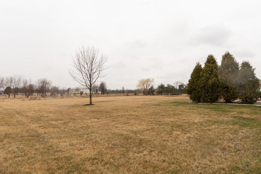 Real Estate Photography - 24410 S. Pine Ridge Drive, Monee, IL, 60449 - Back Yard