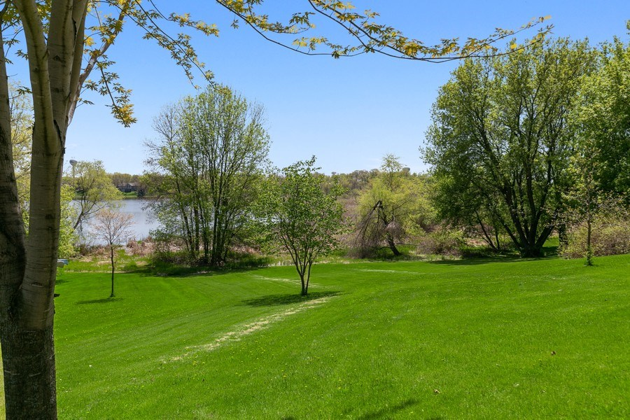 Real Estate Photography - 507 Benton St W., Cologne, MN, 55322 - Backyard 1