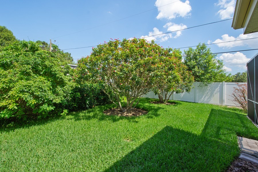 Real Estate Photography - 1389 Sea Breeze St, Clearwater, FL, 33756 - Back Yard
