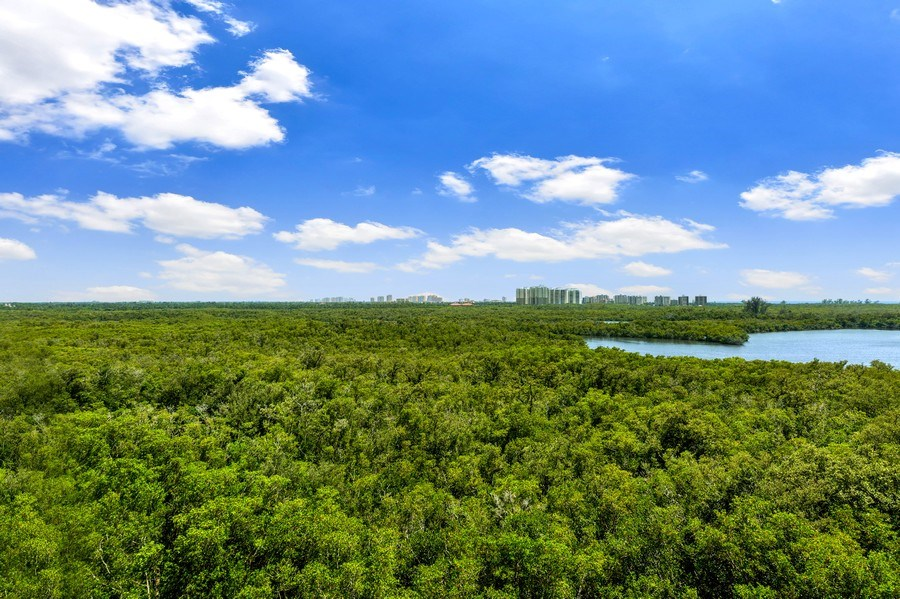 Real Estate Photography - 425 Cove Tower Dr, Naples, FL, 34110 - Rear View