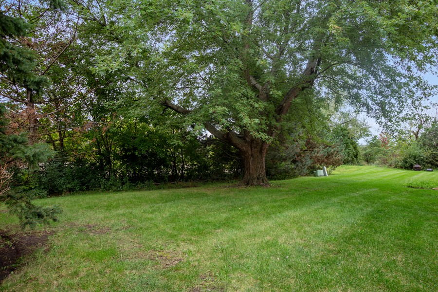Real Estate Photography - 1379 westminster circle, roselle, IL, 60172 - Back Yard
