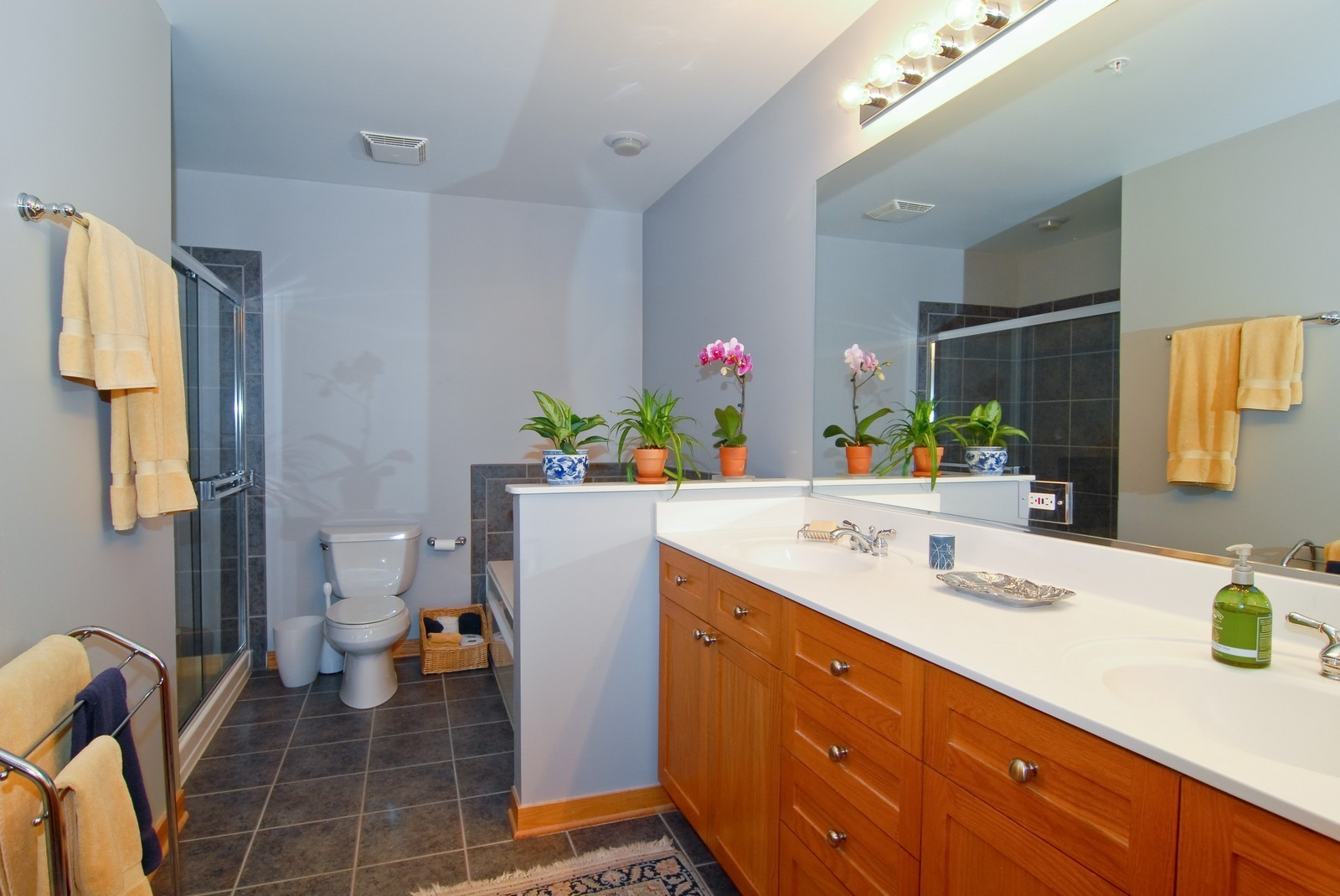 Real Estate Photography - 101 N Euclid, Unit 21, Oak Park, IL, 60302 - Master Bathroom