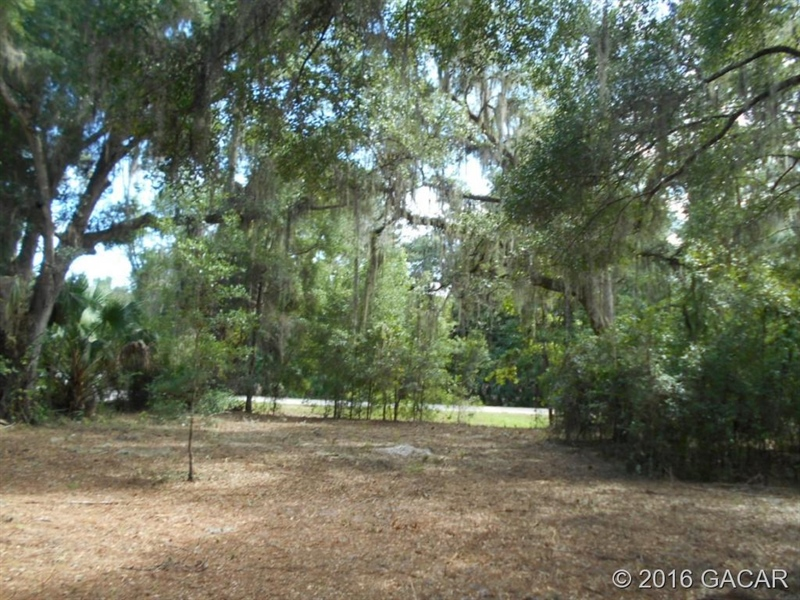 Real Estate Photography - 120 NE Evans Ct, Micanopy, FL, 32667 - Location 10