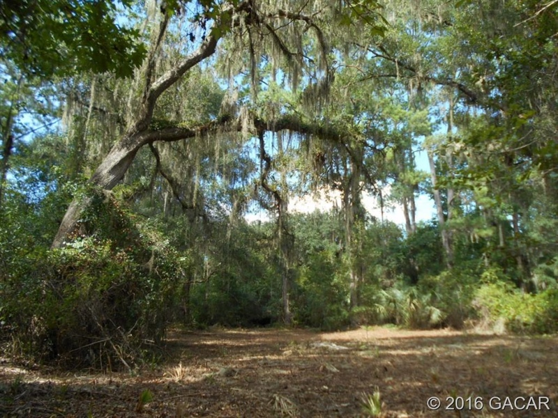 Real Estate Photography - 120 NE Evans Ct, Micanopy, FL, 32667 - Location 23