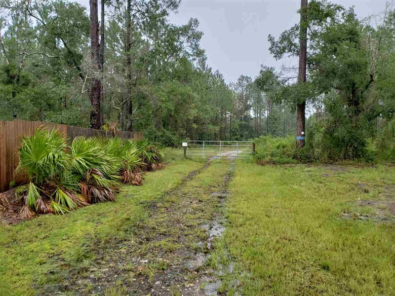 Real Estate Photography - 0 County Road 13 N, St Augustine, FL, 32092 - Location 1