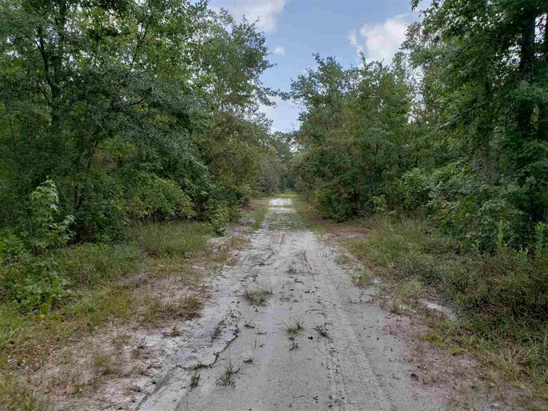 Real Estate Photography - 0 County Road 13 N, St Augustine, FL, 32092 - Location 3