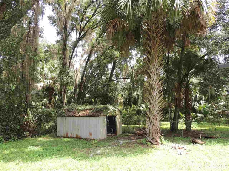 Real Estate Photography - 1406 Wacahoota Road, Micanopy, FL, 32667 - Location 22