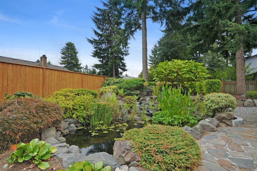 Real Estate Photography - 4470 142nd Ave SE, Bellevue, WA, 98006 - Pond