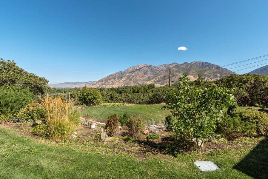 Real Estate Photography - 2731 E Carole Drive, Cottonwood Heights, UT, 84121 - Rear View